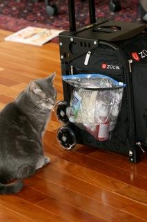 Zuca Sport Bag - Review