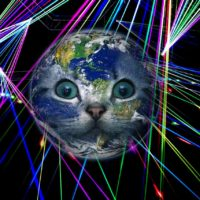 Laser Cat Bowling: Fun DIY Laser Game To Play With Your Cats