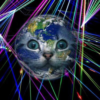 Laser Cat Bowling Game