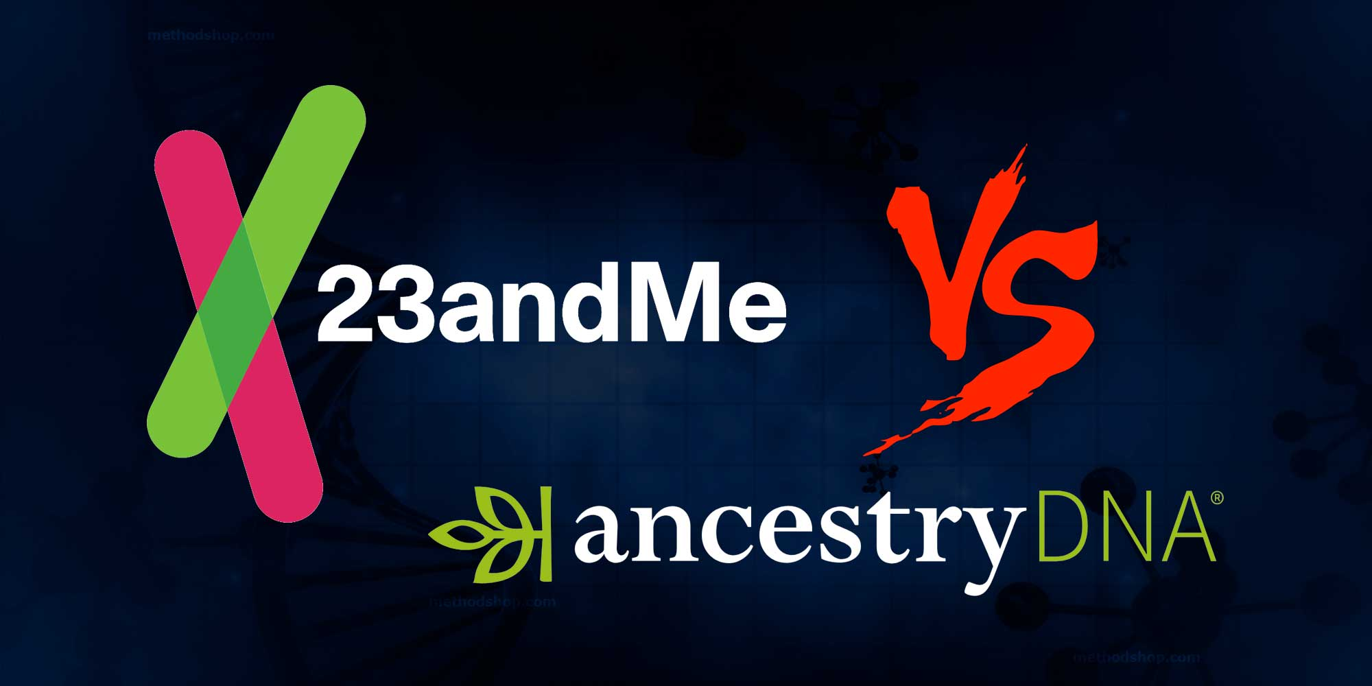 23 and Me vs Ancestry: Which Home DNA Kit Should You Try?
