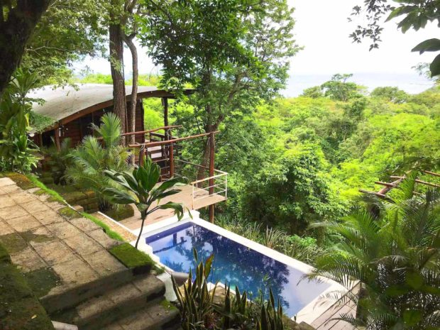 Casa Arbol - Treehouse Life In Sjds