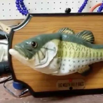 Guy Hacks Alexa Into a Billy Bass Talking Fish