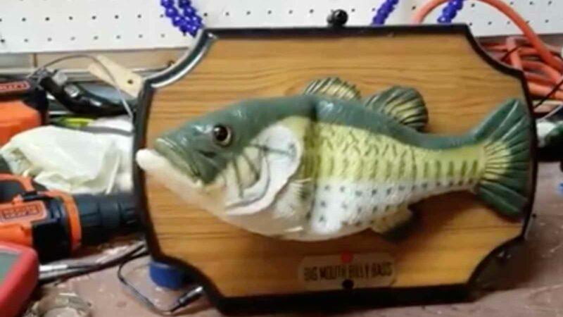 Guy Hacks Alexa Into a Billy Bass Talking Fish