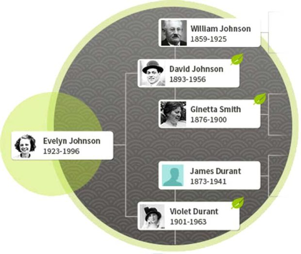AncestryDNA Family Tree
