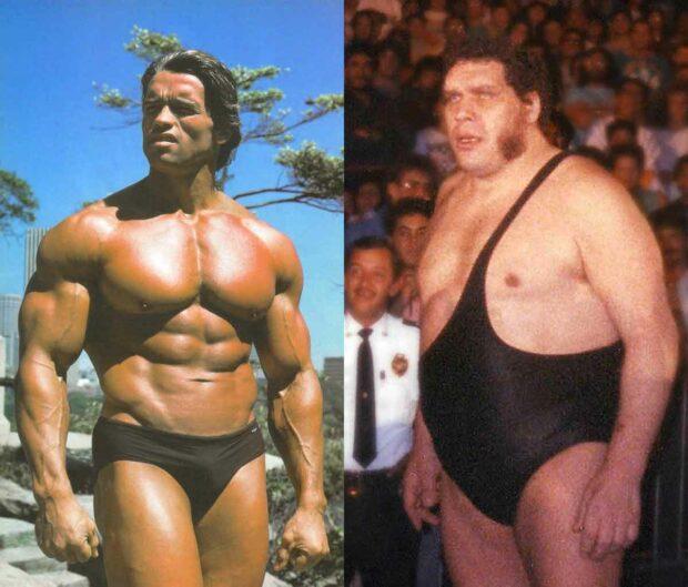 Arnold Schwarzenegger &Amp; André The Giant