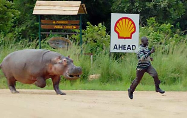 Man Running Away From A Hippo