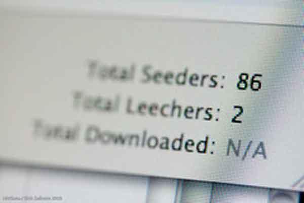 BitTorrent Seeders & Leachers