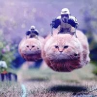 Funny Star Wars Pictures: 32 Photoshopped Pictures That Only Star Wars Fans Will Truly Appreciate