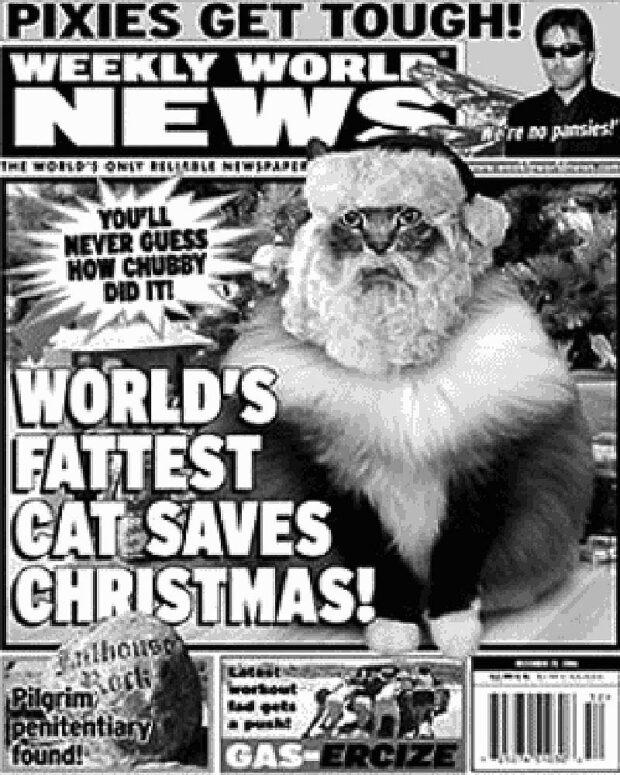 Tabloid Cat Headline: World's Fattest Cat Saves Christmas!