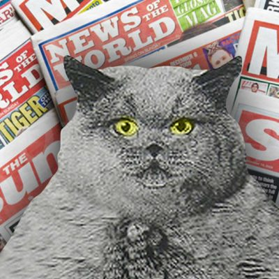 Ridiculous Tabloid Headlines (About Cats)