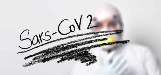 Coronavirus SARS-CoV2 Virus