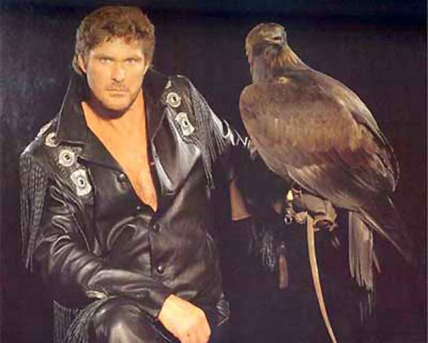 Embarrassing David Hasselhoff Photos: The Falconer