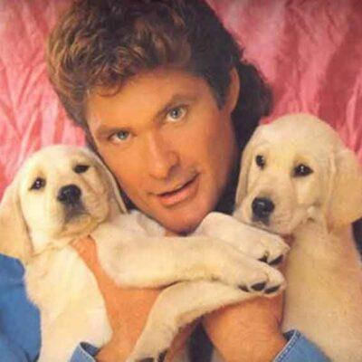 David Hasselhoff Holding Puppies