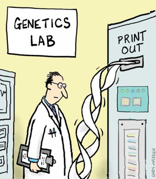 Dna Printer - Dna Test Jokes