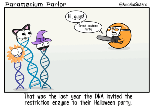 Restriction Enzyme Joke