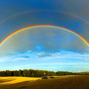 The Double Rainbow Viral Video - It's So Intense!