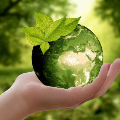 Earth Day - Green Tips For Earth Day
