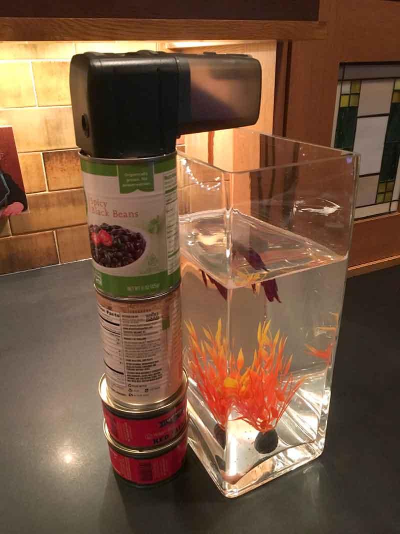 Eheim automatic fish feeder