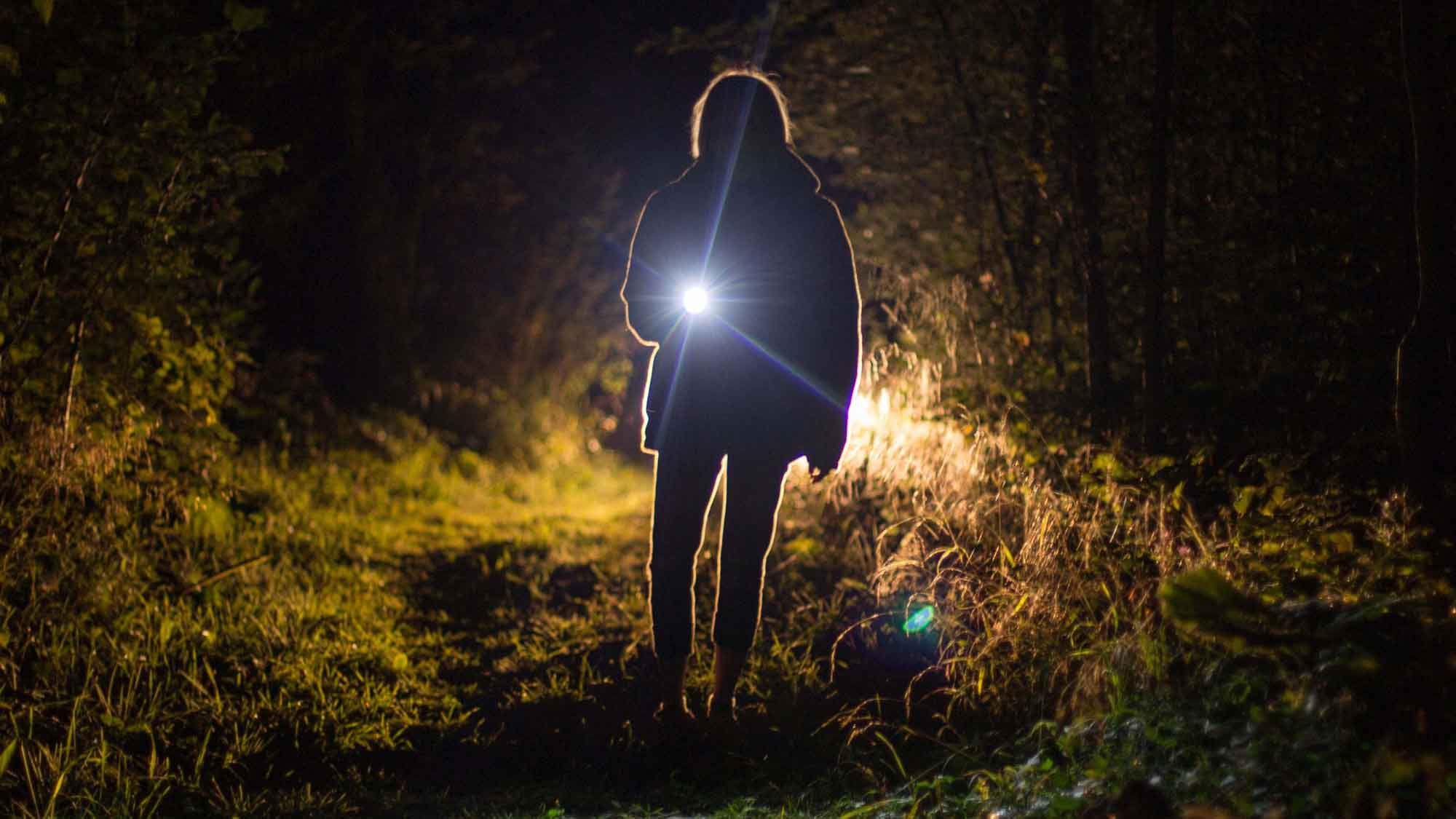 Woman With A Flashlight In The Woods