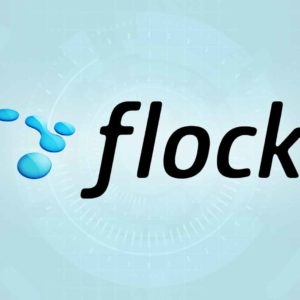 Flock Web Browser Adds Even More Social Networking Features