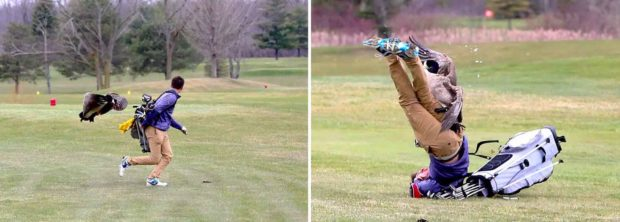 Goose Attacks Golfer