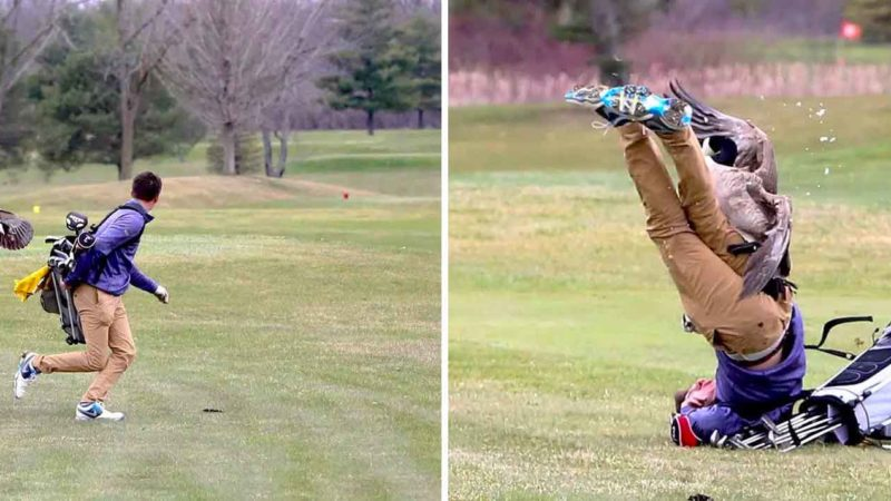 Goose Attacks Golfer
