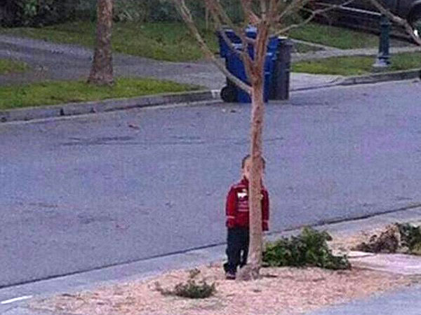 Hide-And-Go-Seek Fail: Tree