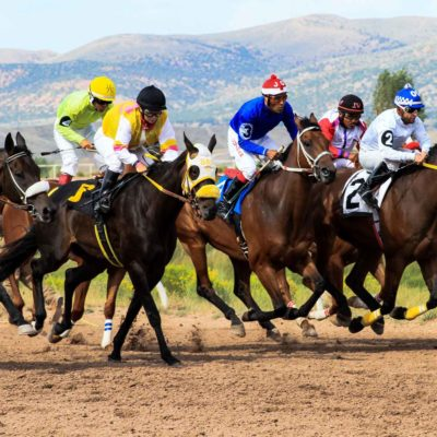 Horse Race IN Wyoming