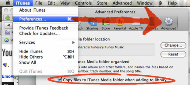 iTunes import preference settings