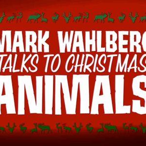 Mark Wahlberg Talks To Christmas Animals