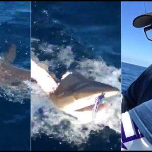 Fishermen Watch In Horror As A Shark Massacres Their Catch