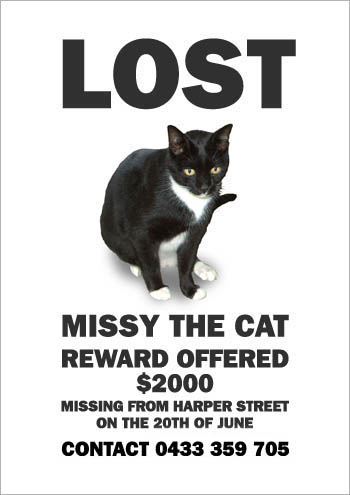 Missing Missy: Reward