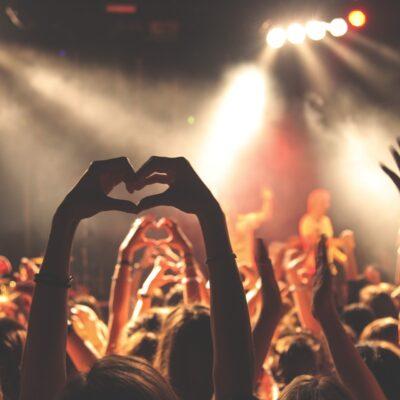 Music Fans At A Concert