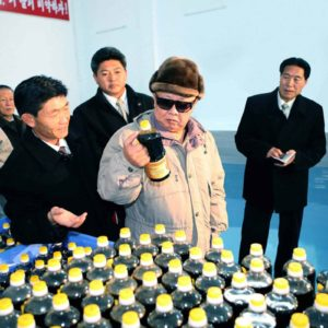 "The Tumblr Blog ""Kim Jong-Il Looking at Things"" Is Simple Yet Fascinating"