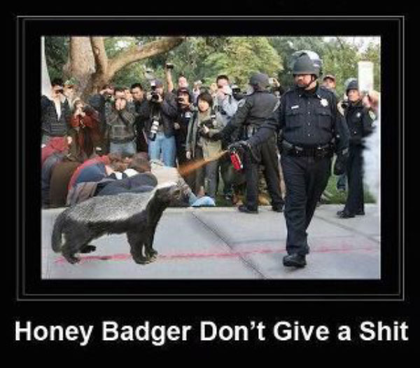 Pepper Spray Meme: The Honey Badger vs Lt. John Pike