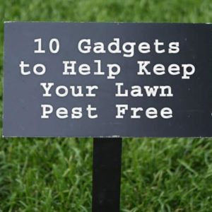 10 Gadgets to Help Keep Your Lawn Pest Free