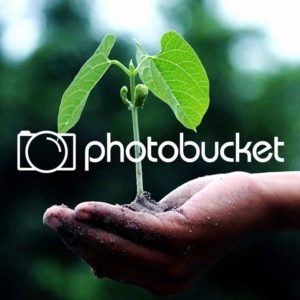 MySpace To Buy Photobucket For $250-300 Million (2007)