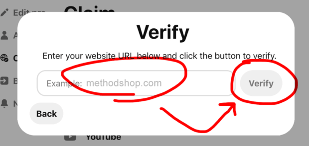 Verify that your Pinterest verification code was successfully installed