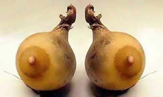 Plant Porn: Gord Nipples