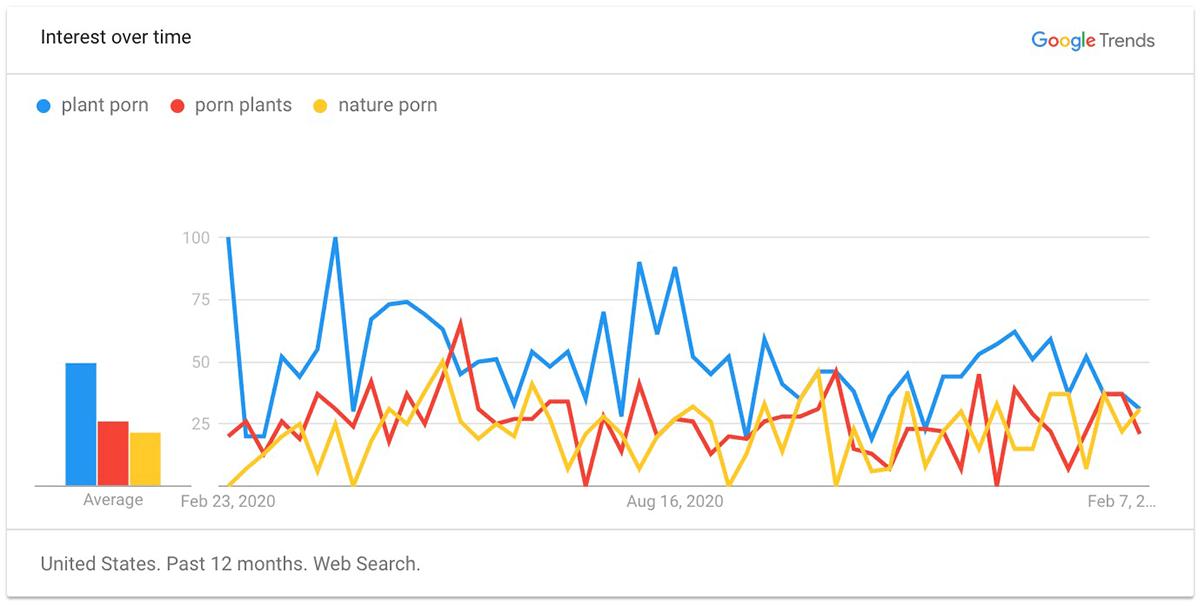 Plant Porn Internet Search Trends