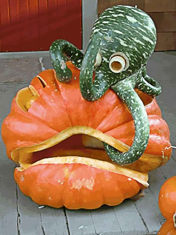 Green Gourd Octopus Attacking A Halloween Pumpkin