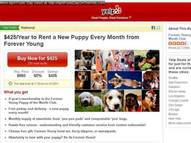 Yelp Puppy of the Month Club
