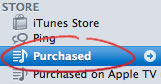 iTunes Purchased Content