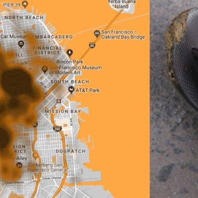 San Francisco: Poop On Flip-Flop