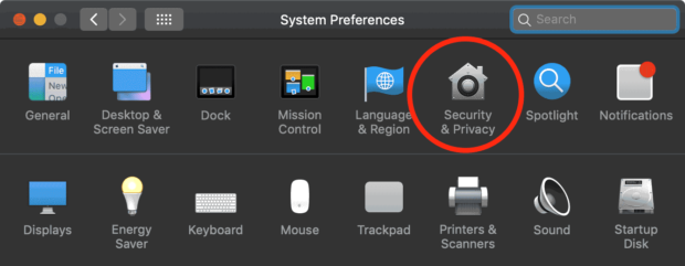 Security & Privacy Icon