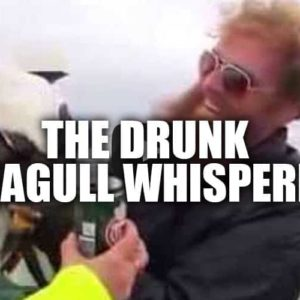 VIDEO: Drunk Man Catches Seagull Barehanded
