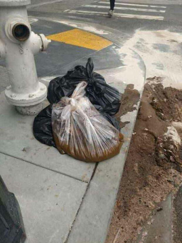 San Francisco Poop: 20-Pound Bag
