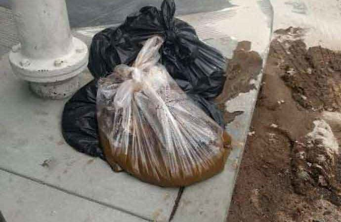 San Francisco Poop: 20-Pound Bag