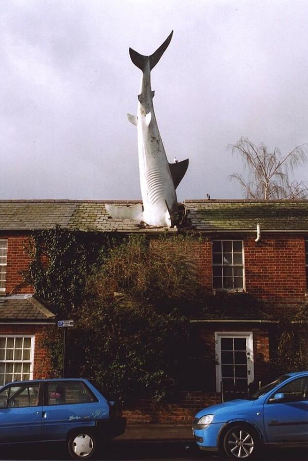 The Headington Shark -  - World'S Weirdest Statues