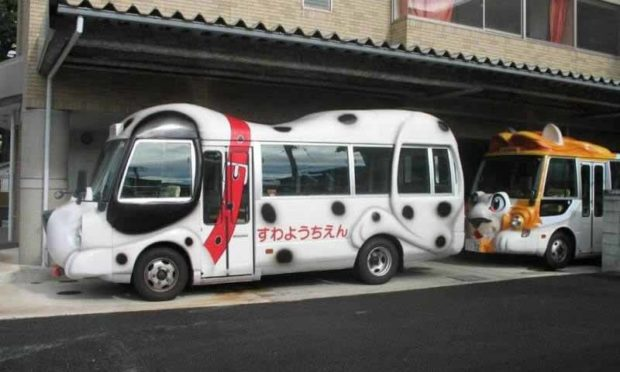 Cat And Dog Buses